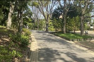 【平和の森公園で愛犬とお散歩!】わんちゃんを連れてみんなでお散歩しよう!