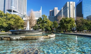 【日比谷公園でピクニック✨】都会のど真ん中でナイトピクニックをしよ〜!😊