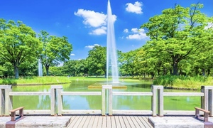 【代々木公園でピクニック✨】緑豊かな都会のオアシスで秋ピクニックをしよ〜!😊