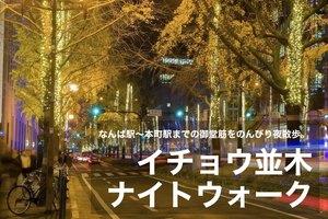 【イチョウ並木・ナイトウォーク】なんば駅〜本町駅までの御堂筋をのんびり夜散歩。