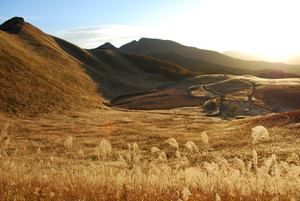 【11月3日】曽爾高原で金色の夕焼けを見ようよ(=゜∀゜)