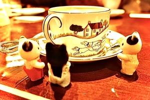 【第56回】 渋谷カフェで交流会♪