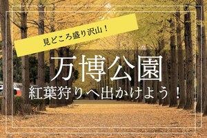【万博記念公園×紅葉狩り】紅葉スポットが沢山!お気に入りのスポットを見つけよう!