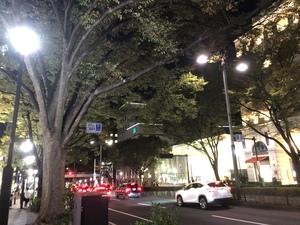 【表参道→原宿】ミニナイトウォーキング