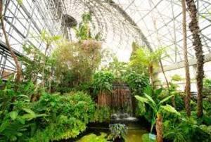 【カメライベント】新木場は夢の島熱帯植物館でゆる~く写真撮影しましょう