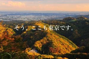 東京写真サークル・高尾山紅葉撮影会2021